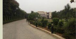 Modern Ansal Satbari 4 BHK Furnished Farmhouse for Rent/Lease