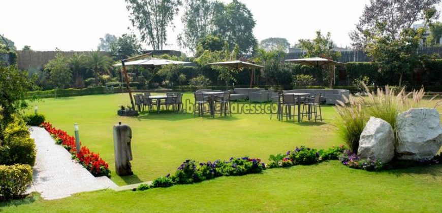 5 BHK Luxury Service Farmhouse DLF Chattarpur for Rent/Lease