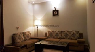 Rent/Lease 1 BHK Apartment/Flat Greater Kailash-1