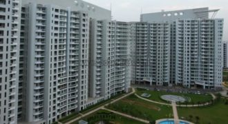 4 BHK DLF Icon Apartment/Flat Gurugram for Rent/Lease