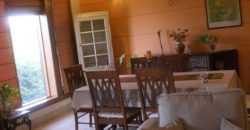 2 BHK Service/Furnished Apartment Vasant Vihar for Rent/Lease