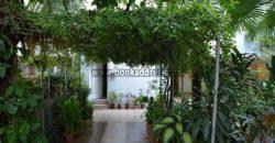 Malcha Marg Chanakyapuri 4 BHK Bungalow Rent